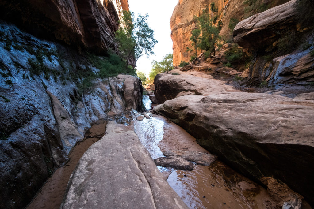 Water running down a narrow area of a canyon